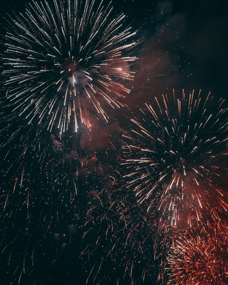 Het nieuwjaarsfeest